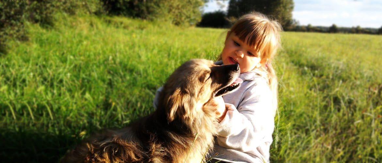 Présenter son bébé à son chien